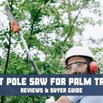 Best pole saw for palm trees